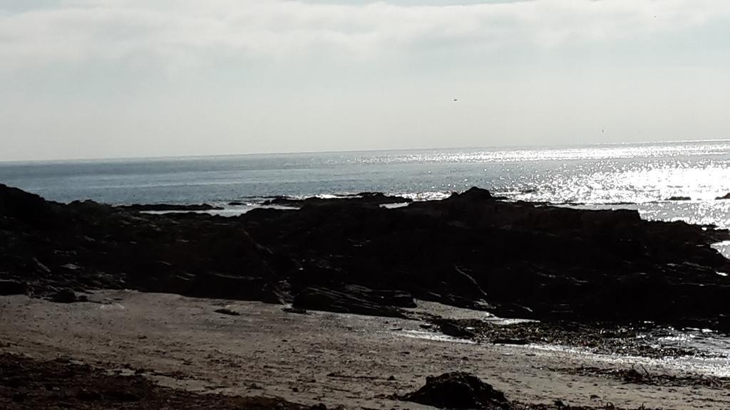 Beautiful walk to Talland Bay #lovecornwall #ilovelooe