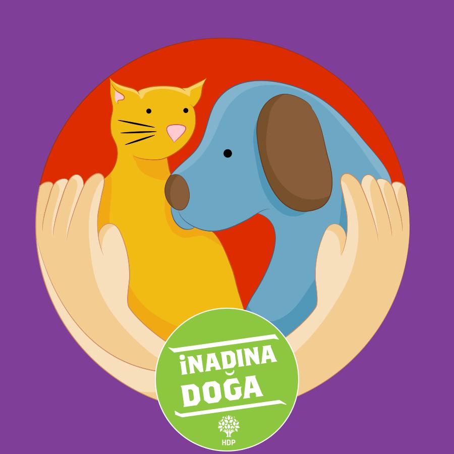 Поздравления, день защиты животных картинки для детей