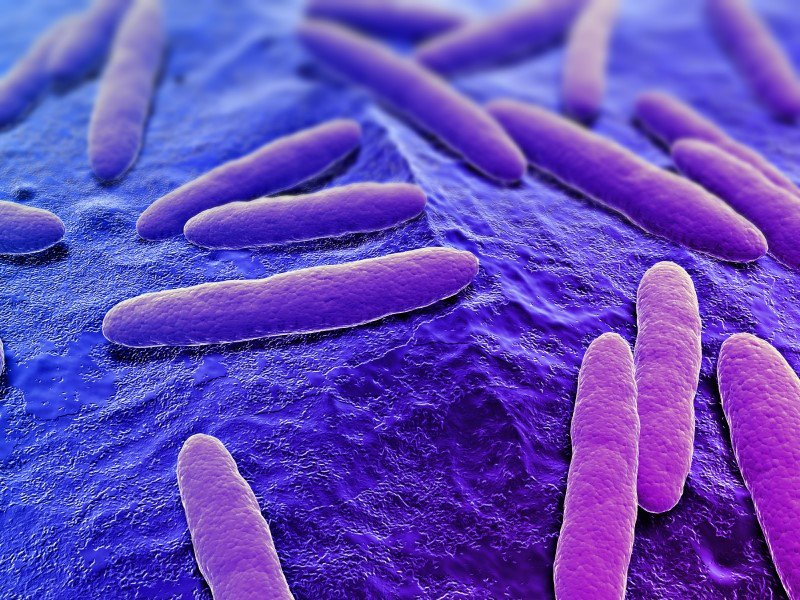 How can whole genome sequencing help control #foodborne diseases? Via @PHGFoundation https://t.co/q4xelhWwRn https://t.co/W8zo41rnSU