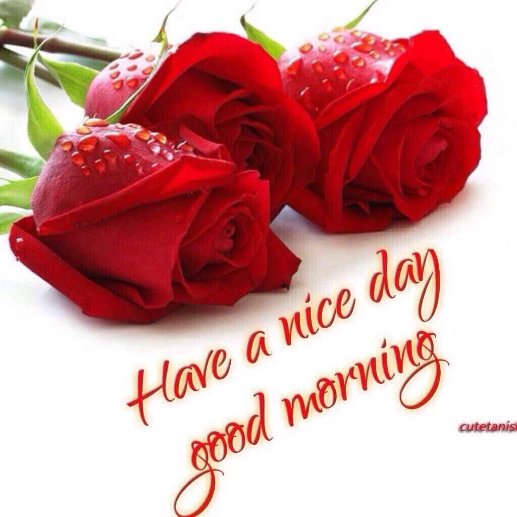 Rahul Mishra On Twitter At Imursneha Good Morning My Dear Friend