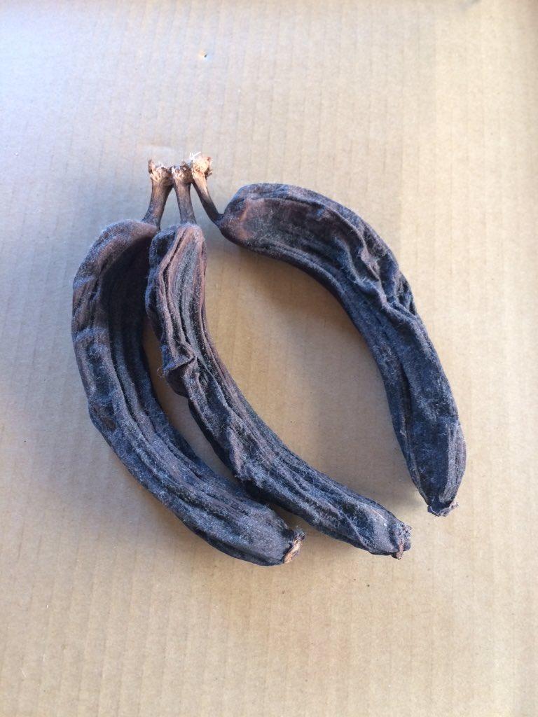 冷蔵庫の上から見つかったバナナ(だったもの https://t.co/S6DOtWLbAc