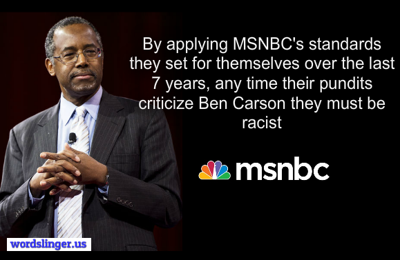Ben Carson called safe negro MSNBC by L. Joy Williams VIDEO