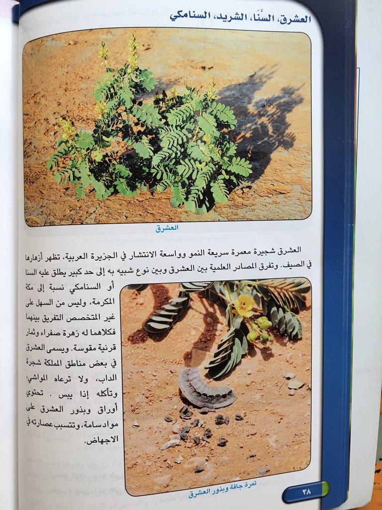 محمد اليوسفي On Twitter Zuhor2016 Khalidababatain Sees400 وهذه القصاصة من صفحة ٢٨٤ الجزء ٢ موسوعة جابر لطب الأعشاب لـ أ د جابر القحطاني Https T Co 1ntcndtp6v