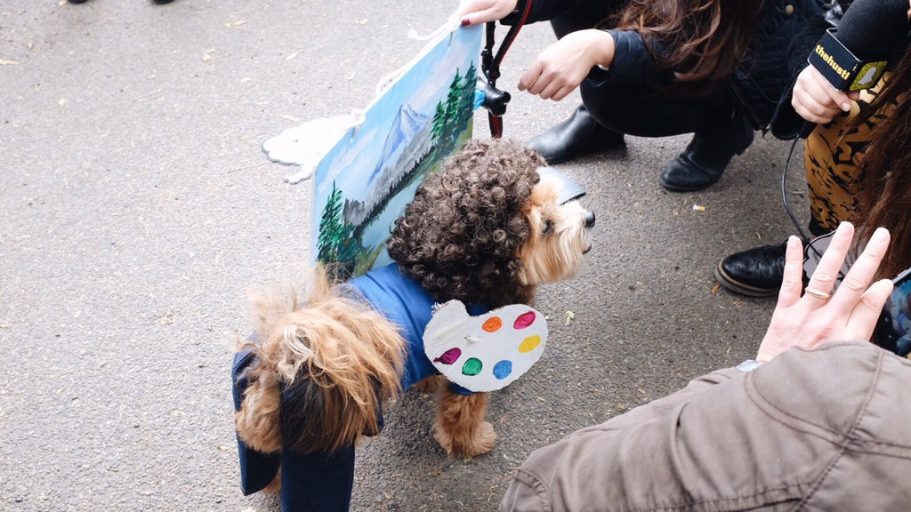 At the dog costume parade at Tompkins Square Park. Bob Ross was the best #eastvillage #dogs https://t.co/BAGwq6mbeH