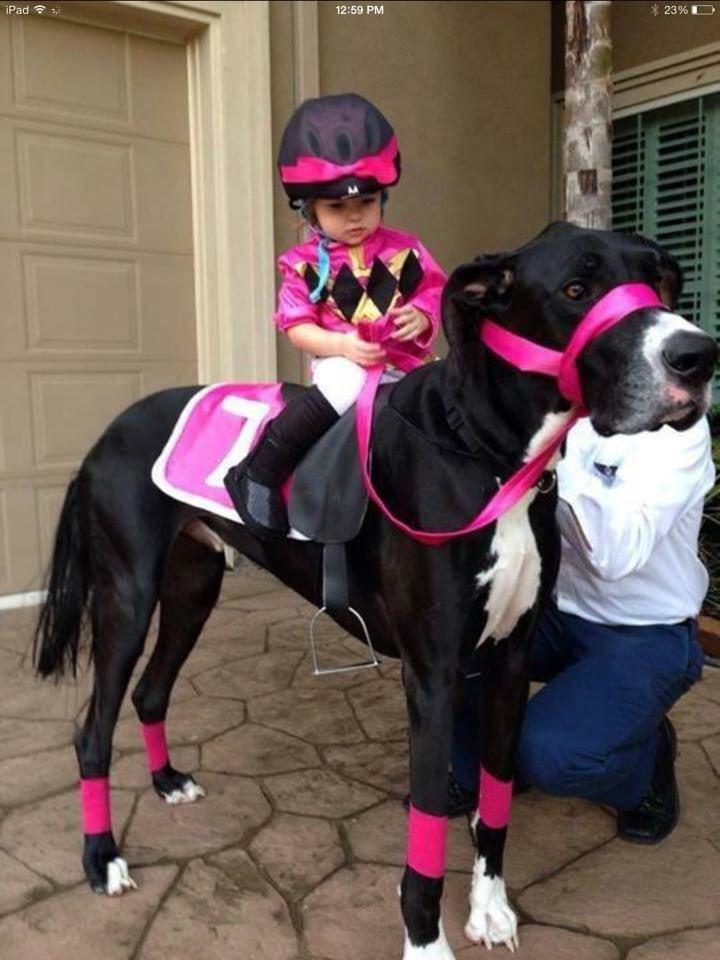 Best Halloween costume ever!!! https://t.co/bkmmPwvXqn