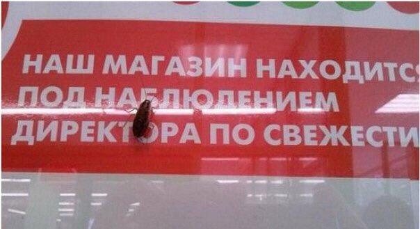 Из-за технической ошибки в протоколе киевскую комиссию по отбору прокуроров обвинили в фальсификации, - секретарь - Цензор.НЕТ 7625
