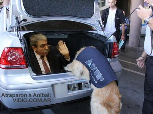 Apareció Anibal!!!!! https://t.co/IkvE6Cithq