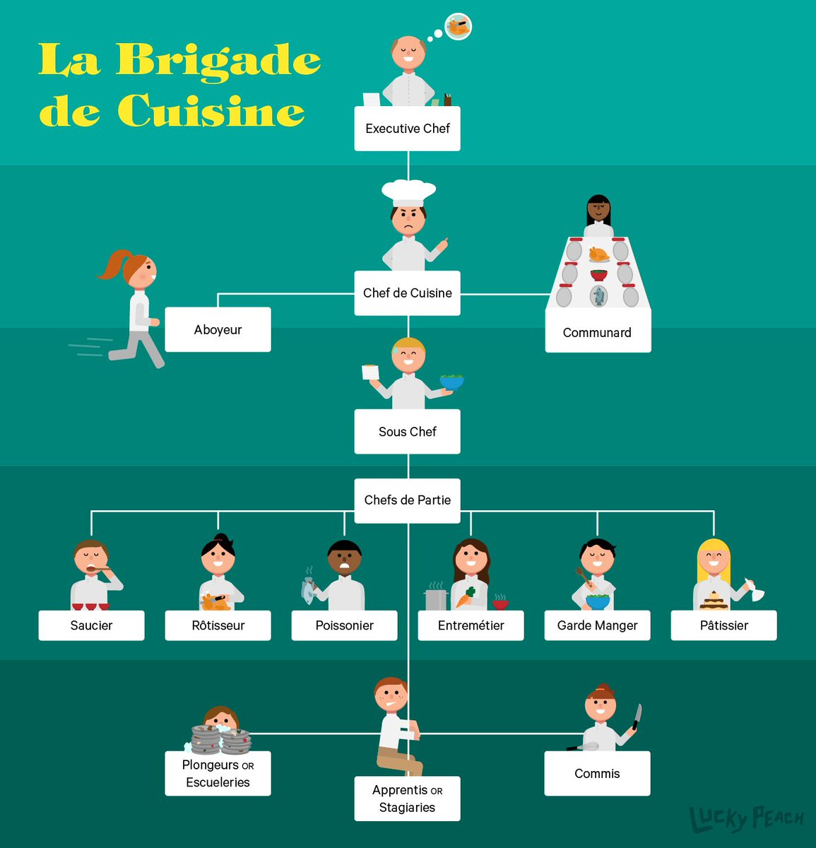 """Kitchen Organizational Chart And Their Responsibilities: Chefs Direct On Twitter: """"Get To Know The Kitchen Brigade"""