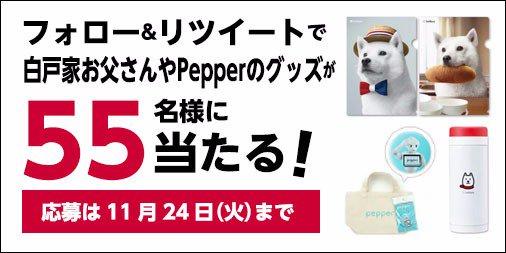 KFCとソフトバンクのコラボ記念♫ 11/2〜コラボサイトOPEN! #骨なしケンタッキー プレゼントキャンペーン☆@KFC_jpをフォローしてこのツイートをリツイートすると、 ソフトバンクグッズが当たる!#KFCとSoftbank https://t.co/o292dmKqIK