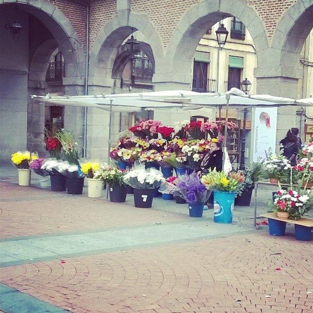 L de lana, lanasonline, mercado de flores todos los santos, avila