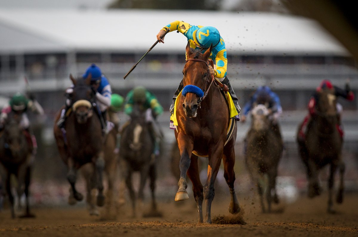 HISTORY MADE. #AmericanPharoah has won the #GrandSlam #BC15 Classic Champion. https://t.co/GDa6hqD0kA