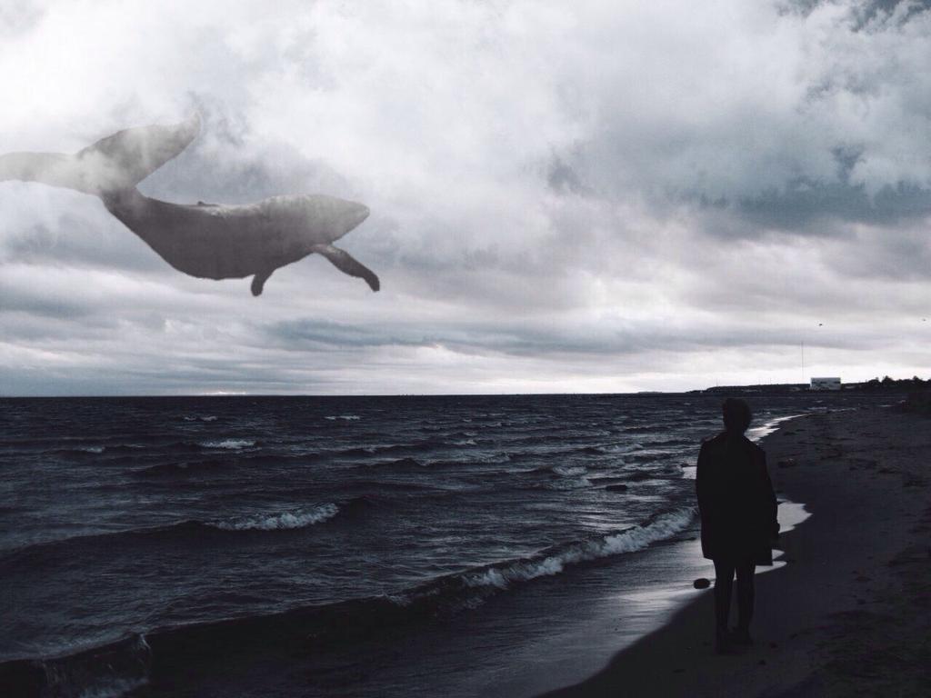 качестве результата киты в небе фото нужен более