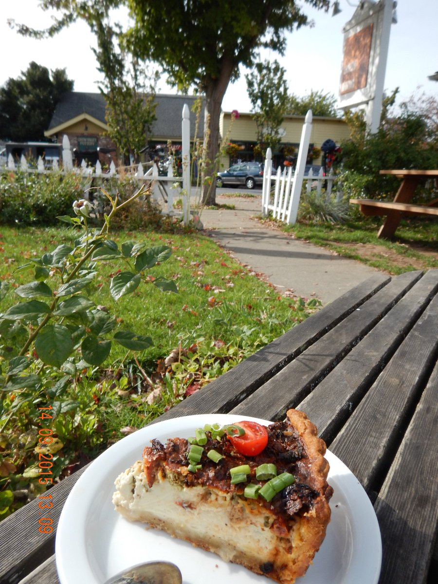Brown Bear Baking by bicycle: warm vegetable quiche in crisp fall air