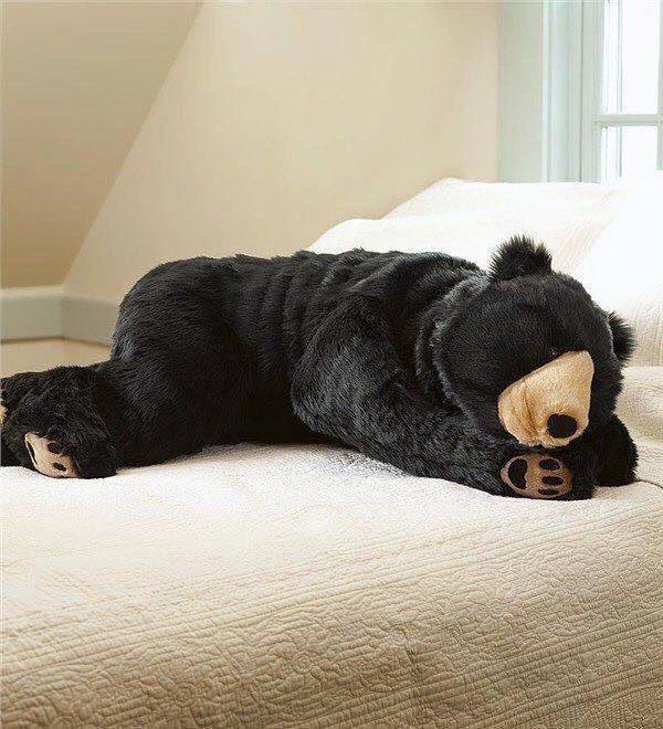 クマの寝袋の作りが本格的すぎて、喰われてるようにしか見えないよwww