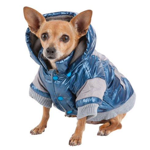 Don't forget that your pup needs to stay warm AND fashionable in the winter! https://t.co/sBnoZnfNPO #pets #dogcoat https://t.co/H9RALWm72w