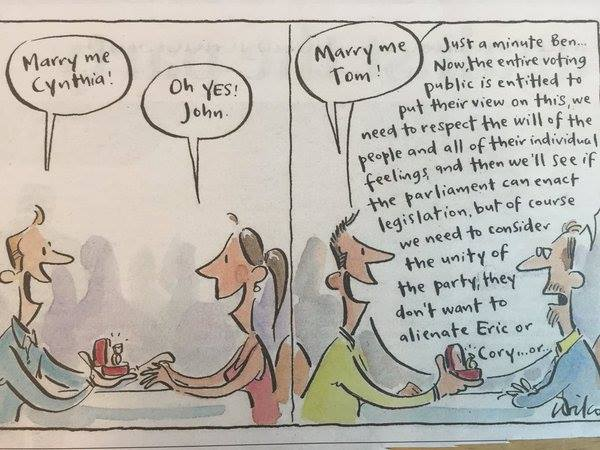 This is actually perfect. The state of #MarriageEquaility in Australia right now. Credit to - @cathywilcox1 https://t.co/iT7zpwOluZ