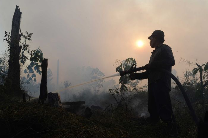 Fires creating choking haze shrouding Indonesia are thought to have been lit to clear land for palm oil plantations https://t.co/fh145GQ4xs