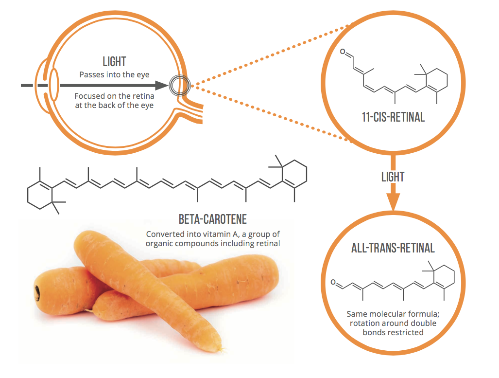 Can carrots help you see in the dark? @compoundchem explains this and more this weekend https://t.co/6sfsSA1aOV https://t.co/8OAk131gPC