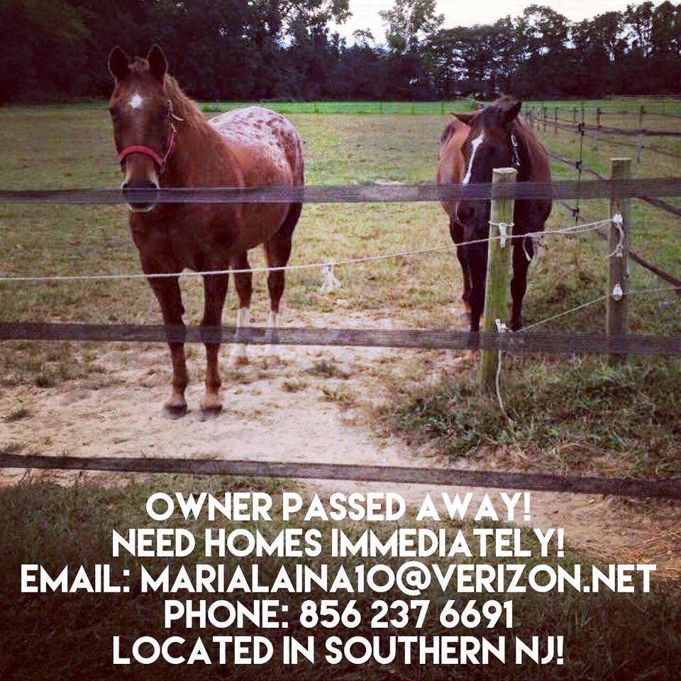 @GloriousAllianc G and/or K know anyone in the area? https://t.co/eiFQ81hngN
