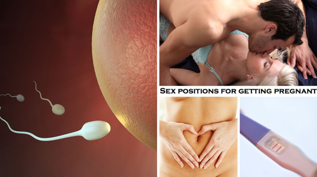 For sex position and getting pregnant authoritative answer