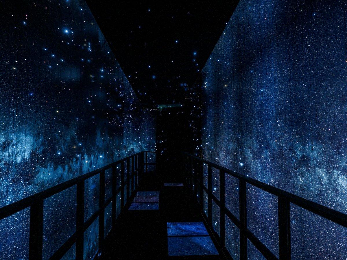 【歩く天の川】六本木ヒルズに「銀河の散歩道」が出現♪
