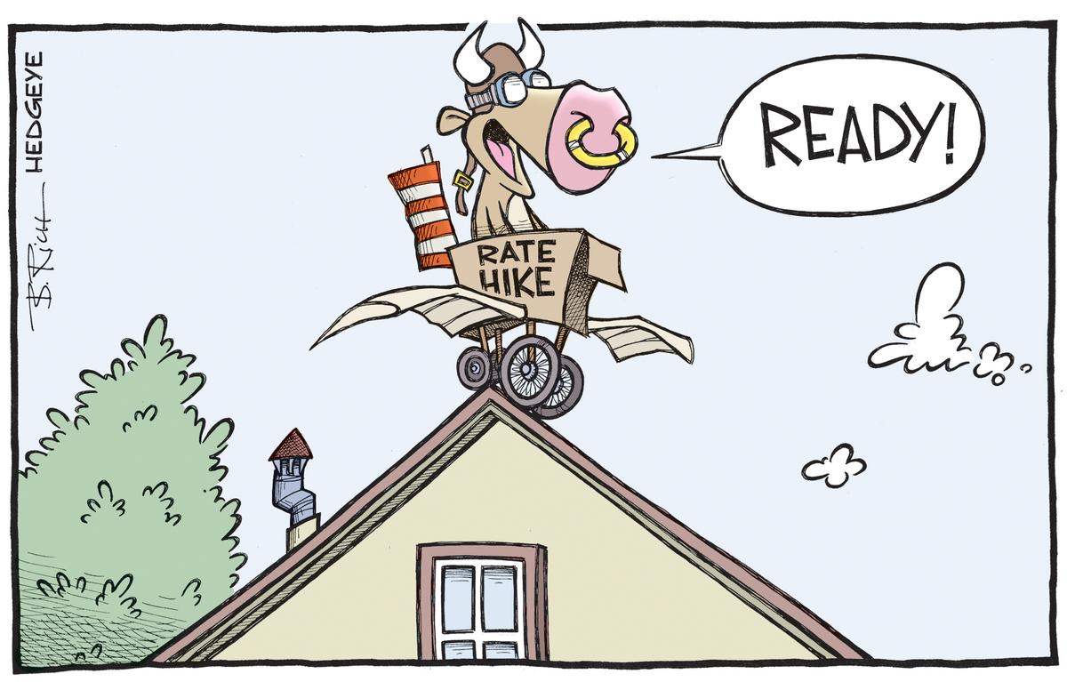 Risultati immagini per hedgeye housing cartoons