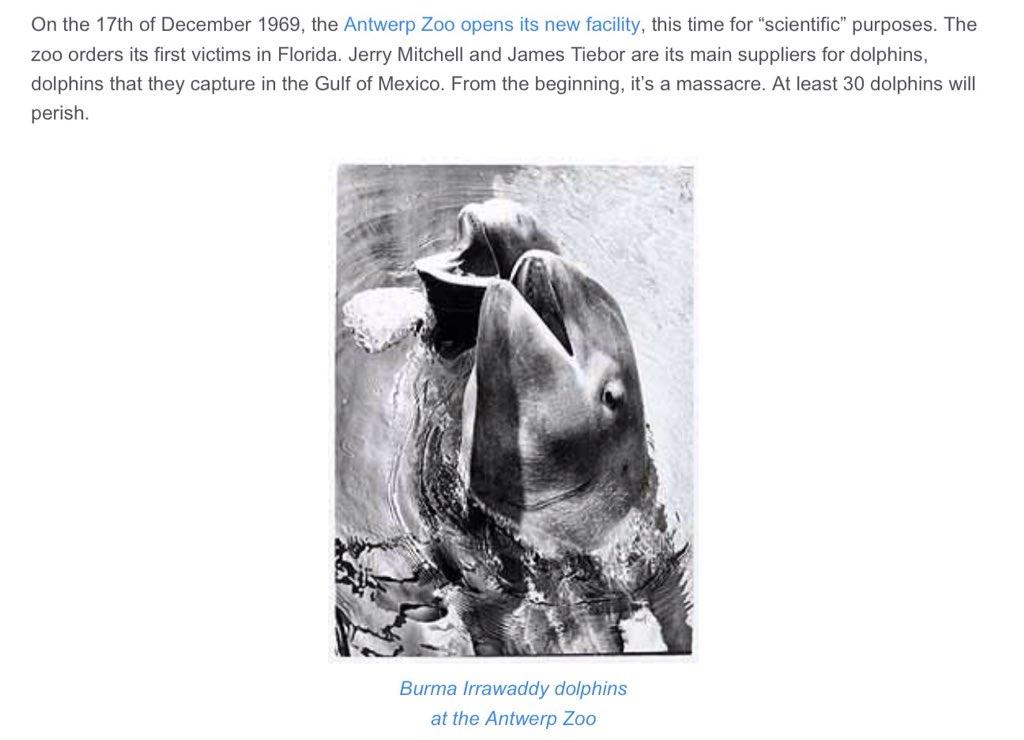 Le Delphinarium de #Anvers ordonne beaucoup à ses dauphins comme en #Floride et comme d&#39;autres le font #FreeFinsEU<br>http://pic.twitter.com/WOo9qZChuK