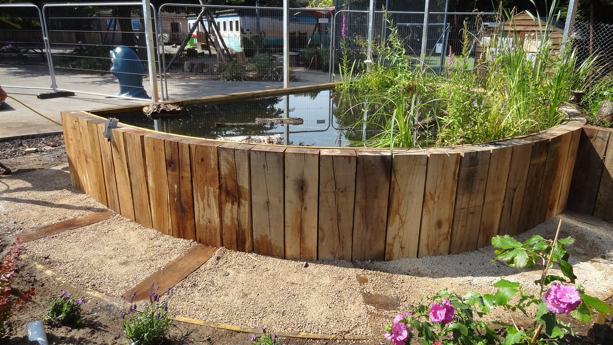 Lambeth tcv on twitter raised pond built from half oak for Large fish ponds for sale