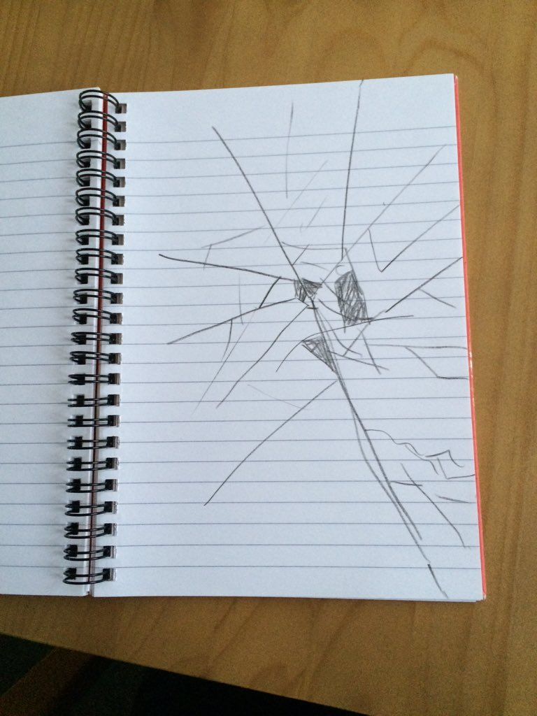 Dropped my notepad and cracked the screen.