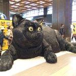 見てビックリ‼️な巨大クロネコが仙台に登場!