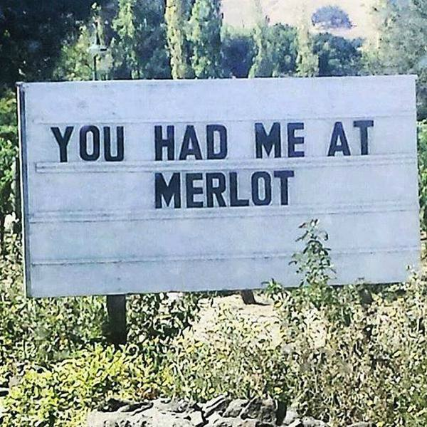 #MerlotDay #ClineMerlot #SignoftheCline #WinterNights https://t.co/YbfqHBn8aO