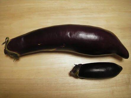ちなみに上が熊本の茄子、下が都会の茄子。上が普通だと思って20年以上生きてたから、2人前の麻婆茄子のレシピに「茄子3〜4本」と書かれていて本当に困ったのだ。 pic.twitter.com/FnZotsJrFV