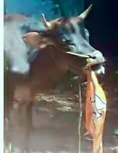 Thumbnail for Kisi Ki Deewali, Kisi Ka Deewala