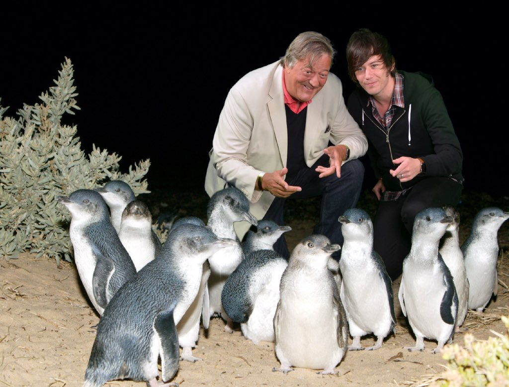 RT @PhillipIslandNP: Our little penguins were lucky enough to meet @stephenfry and @ElliottGSpencer this weekend! Thanks for visiting 🐧 htt…