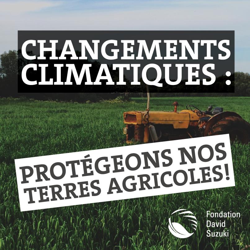 Risque réel que Qc voit son agriculture lui échapper; notre étude https://t.co/bl497DFpDQ avec @upaqc #Pourlaterre https://t.co/nRRwlKxAvs