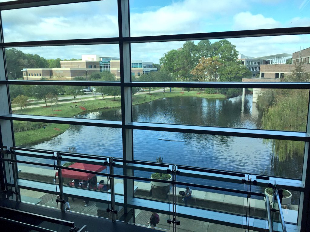 Unf Library On Twitter Weve Had So Much Rain Lately Our Poor