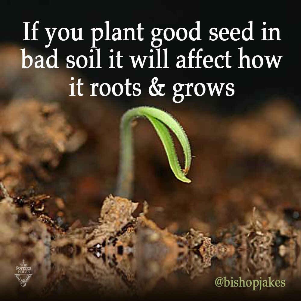 "T.D. Jakes on Twitter: ""If you plant good seed in bad soil ...