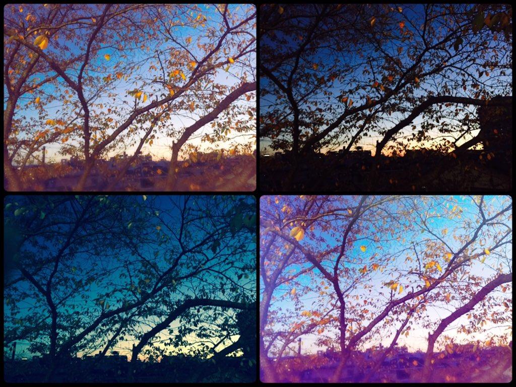 #写真好きな人と繋がりたい #同じアングルでも雰囲気違う #sky  どの色が好きですか?pic.twitter.com/2C12MOhQ9X