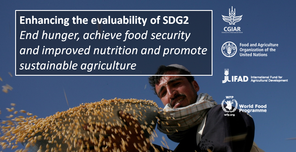 "Thumbnail for Technical seminar on ""Enhancing the evaluability of SDG2"""