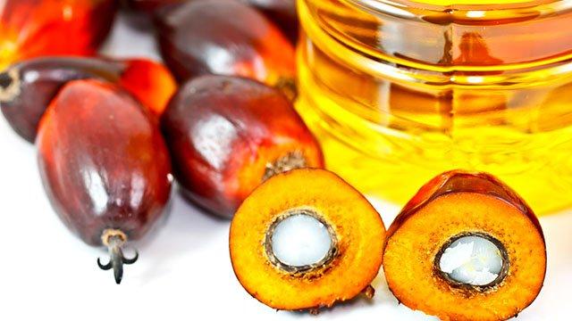 """""""Sudan"""", il colorante cancerogeno nell'olio di palma """"ZOMI"""""""
