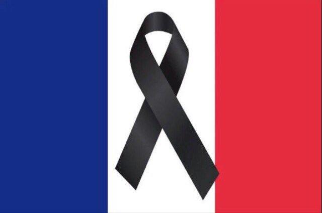 Toda mi solidaridad con el pueblo francés #TodosSomosParisinos #PrayForParis https://t.co/BsQ99olE3F
