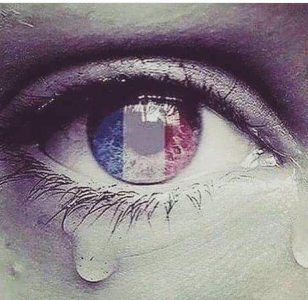 Cose che fanno venire i brividi...preghiamo per Parigi, preghiamo per il mondo, preghiamo per la pace. #PrayForParis https://t.co/z4p9vkuA7K