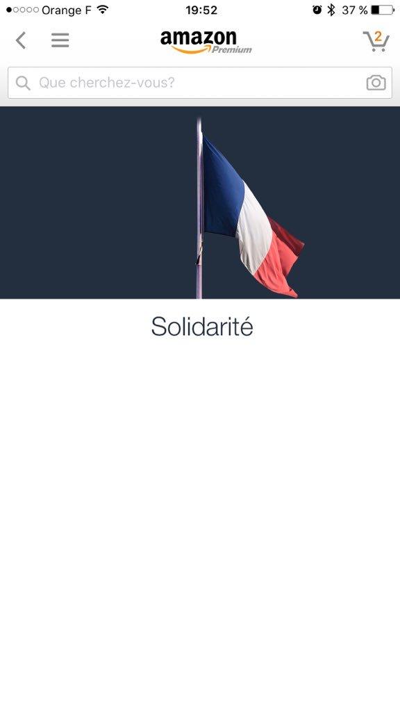 La page d'accueil d'Amazon totalement vidée de tous produits par solidarité avec la France seul un drapeau flotte