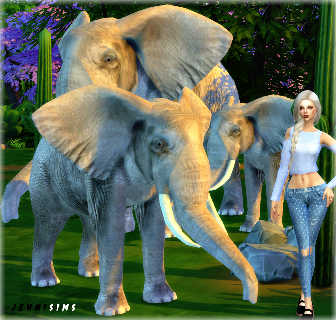 Jennisims On Twitter Quot Sims4 Jennisims Downloads Sims 4