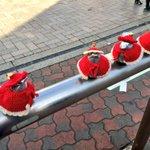 【クリスマス】江ノ島駅前のすずめさん【コーデ】