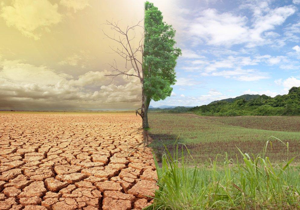 Cambiamenti climatici causano migrazione delle persone