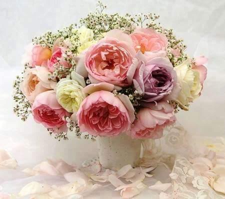 احلى الورود CUB7lZaXAAIgqE0