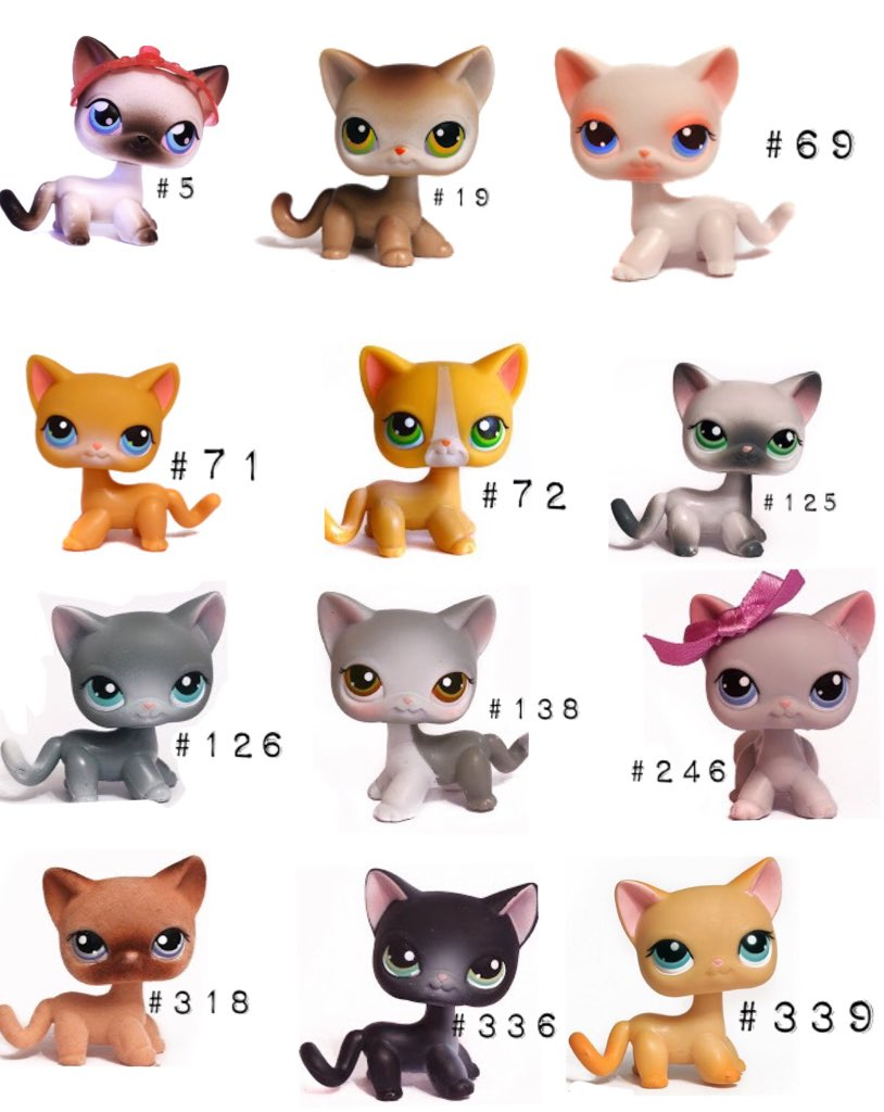 Lps Shorthair Cats Icons
