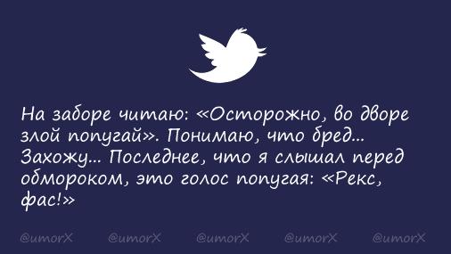 CUCDxG_U8AA8_GM.png