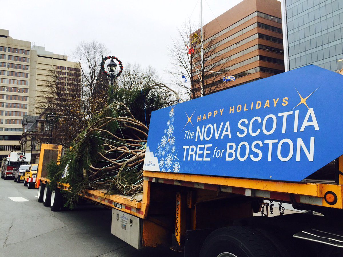 NS's Christmas #TreeforBoston wrapped and ready for sending. Boston remains a strategic market for NS #exports https://t.co/aTHVvH2owC